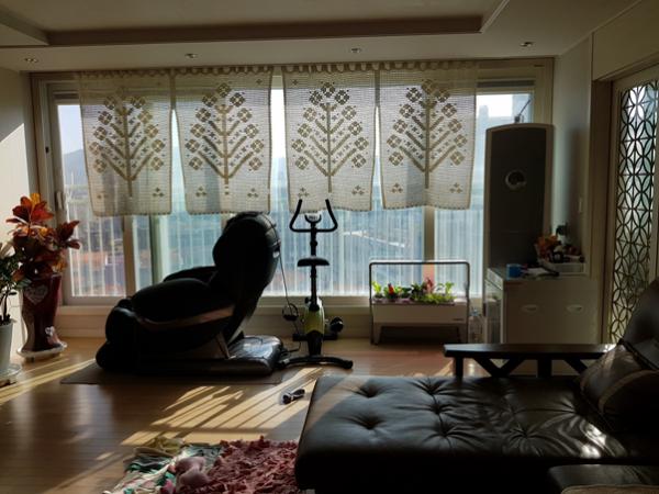 아파트 확장형 베란다 구조에 딱인 풍성한 우리 텃밭 어떤가요?
