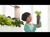 우리 집에 식물재배기 파쯔파쯔가 있다면 어떨까?
