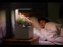#11 우리텃밭파쯔파쯔? 우리꽃밭 파쯔파쯔!, 꽃모종 옮겨심기-