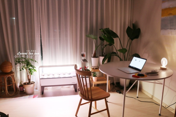 가정용 식물재배기 파쯔파쯔 인테리어 효과