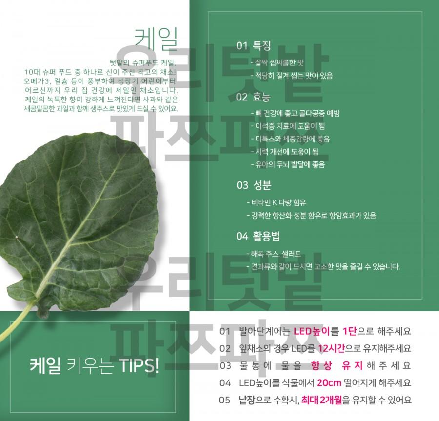 우리텃밭 파쯔파쯔 씨앗카드 8종