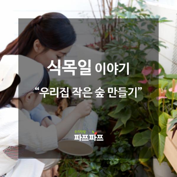[식목일 이야기] 실내에서 키우기 좋은 관엽식물 추천