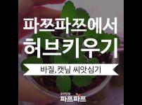 [가정용 식물재배기 우리텃밭 파쯔파쯔에서 허브키우기] 바질과 캣닢 키우기 시작합니다!