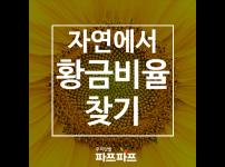 [황금비이야기] 자연 속에서 찾을 수 있는 황금비율 / 가정용식물재배기 / 우리텃밭 파쯔파쯔