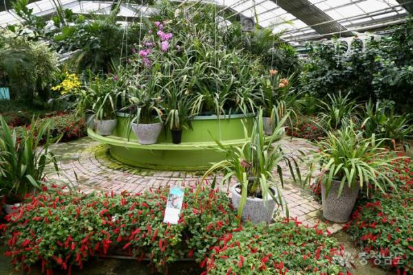 [식물원이야기] 어린이날엔 어디로 놀러갈까? 가볼만한 국내 식물원 추천! / 가정용식물재배기 / 우리텃밭 파쯔파쯔