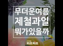 [과일이야기] 올 여름 과일은 내가 책임진다! 여름제철과일들 / 가정용식물재배기 / 우리텃밭 파쯔파쯔
