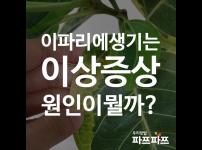 잎에 생기는 다양한 이상 증상 / 우리텃밭 파쯔파쯔 / 가정용 식물재배기