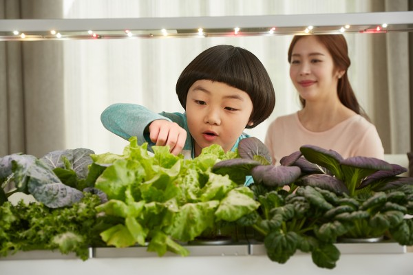 가정용 식물재배기 '파쯔파쯔', 아이들 건강한 식습관 길러주는 교육도구로 주목