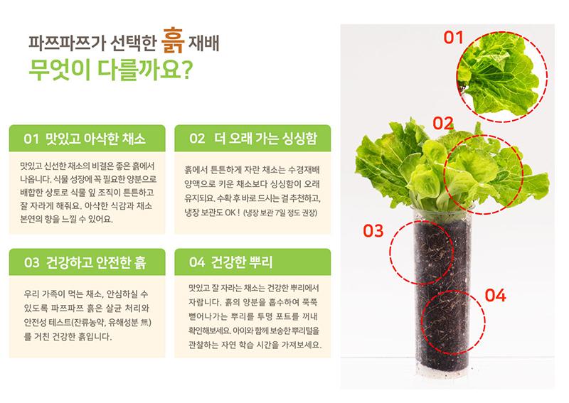 파쯔파쯔 podzpodz 우리텃밭 식물재배기 흙