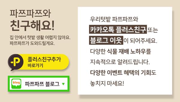 우리텃밭 파쯔파쯔 가정용 식물재배기 Basic